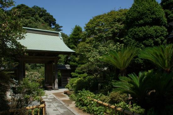 8 成就院の庭.jpg